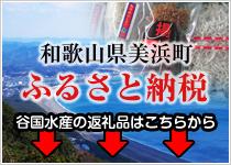 ふるさと納税 和歌山県美浜町